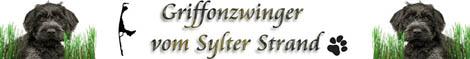 Korthals Griffon Zwinger vom Sylter Strand